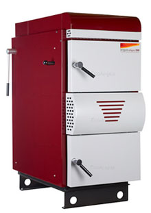 Biomass Log Burner